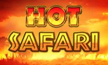 hot-safari