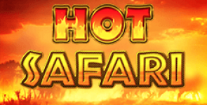 hot-safari